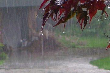 هواشناسی: نقشه بارندگی منتشر شده درباره روزهای آینده جعلی است